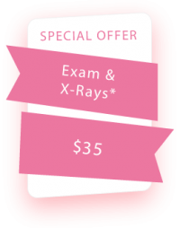offer exam & x-rays